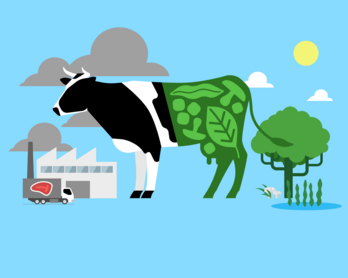 Industry overview: plant-based food