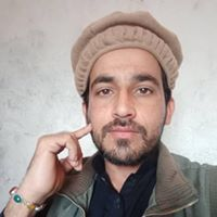 Profile picture of Aamir Bukhari
