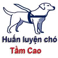 Profile picture of huanluyencho tamcao